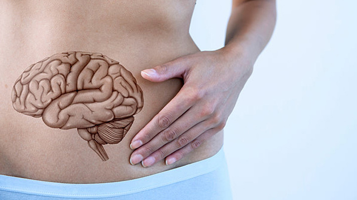 woman holding stomach with illustration of digestive system - Gut health Oak Brook, IL